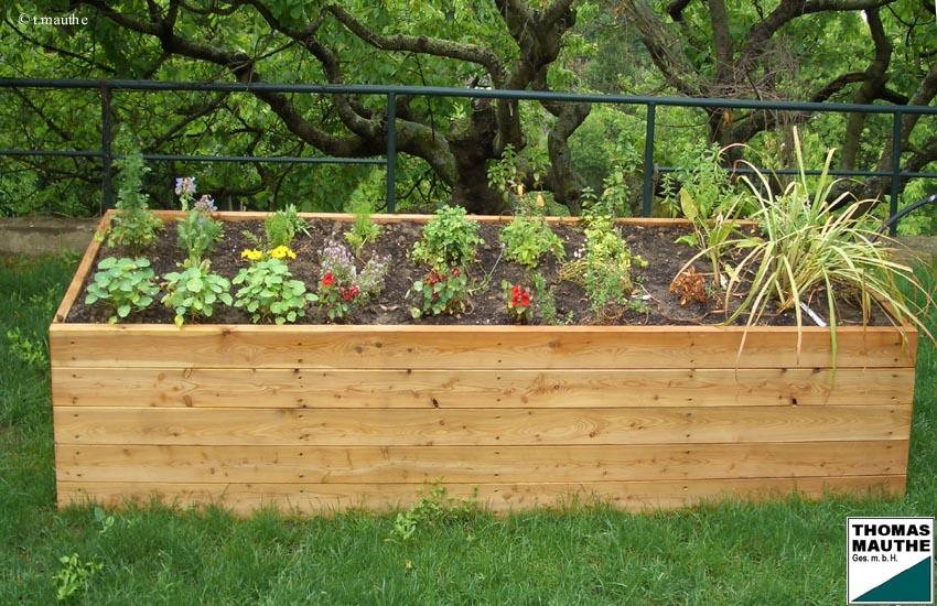 Gabionen Garten mit schöne design für ihr haus design ideen